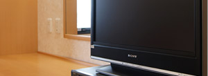 薄型テレビ(地デジ対応)
