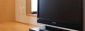 薄型テレビ(地デジ対応)-digital TV-